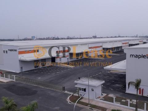 Factory for rent BN-L-08 Tu Son Industrial Park, Bac Ninh Province
